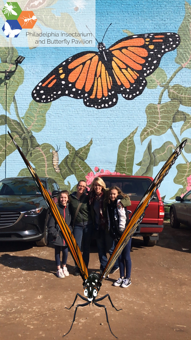 Butterfly Love Fest