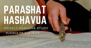 Study Parshat Hashavuah/weekly Torah portion