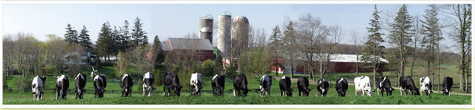 Bosdale_farm_About_Us_Picture.jpg