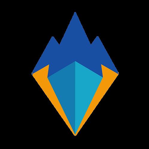 New Venture Development Programme