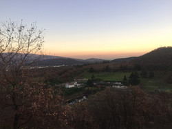 Panorama from our forest