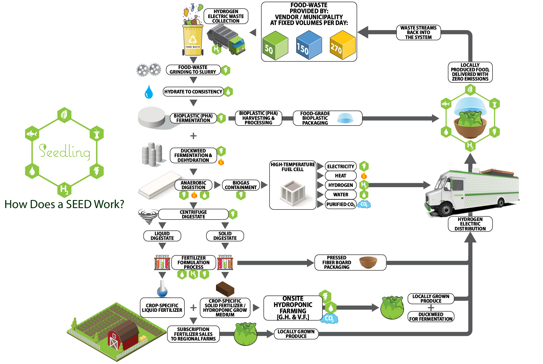 SEED Process Map