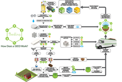 SEED Process Map