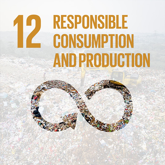 SDG 12: RESPONSIBLE CONSUMPTION & PRODUCTION