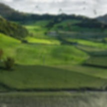 precision_agriculture_sm.jpg