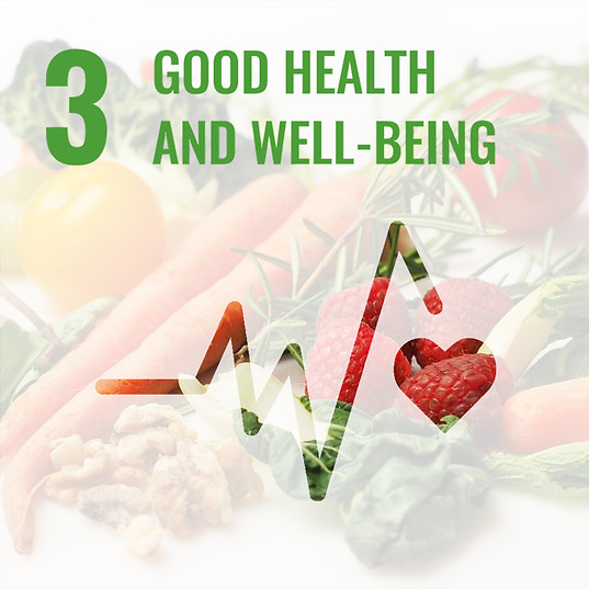 SDG 3: GOOD HEALTH & WELL-BEING