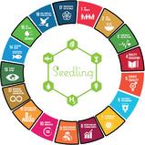 Seedling's SDG Focus