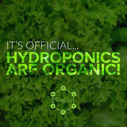 organic_hydroponics.jpg