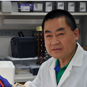 Dr. Xin Chen
