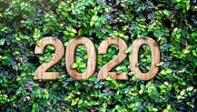 Forest School & OWL 2020 Newsletter
