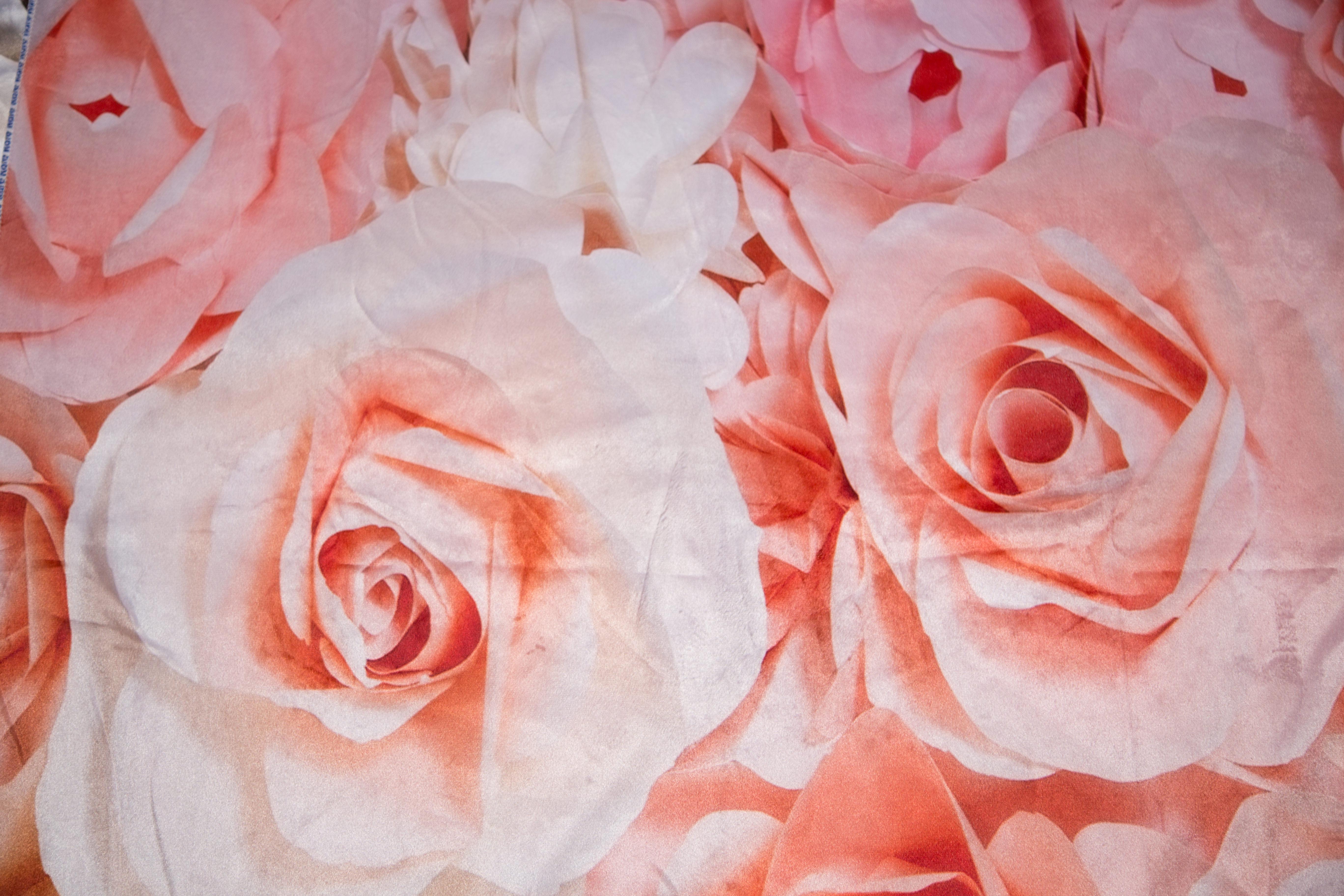 6ft-roses