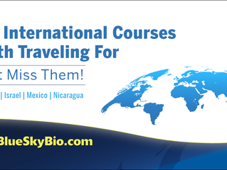 Live International Courses Worth Traveling For. Don't Miss Them!