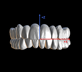 correctly define positions of teeth in occlusion for Denture and CAD modules - blueskyplan software