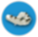 icons-moduls_blank_blue-2-c.png