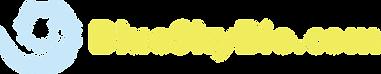 BSB_Logo_2020.png