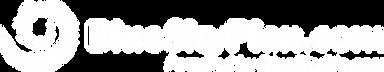 BlueSkyPlan_logo_white.png