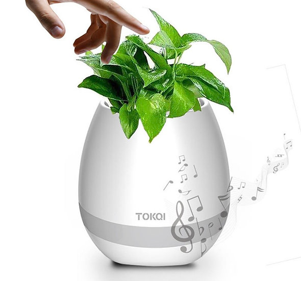 Smart Music 🎶 Flower 🌺 pots
