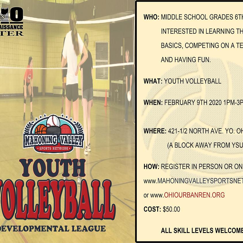 MVSN Youth Volleyball Developmental League