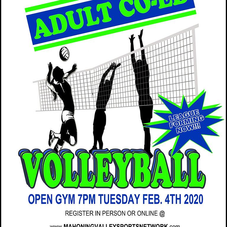 MVSN Adult Volleyball League