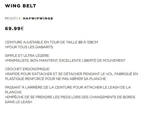 Wing harness.JPG