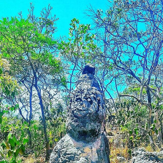 chapada dos veadeiros goias cerrado pedra sorrindo @tassivale Tassiana Vale D' Elboux Tassi Vale