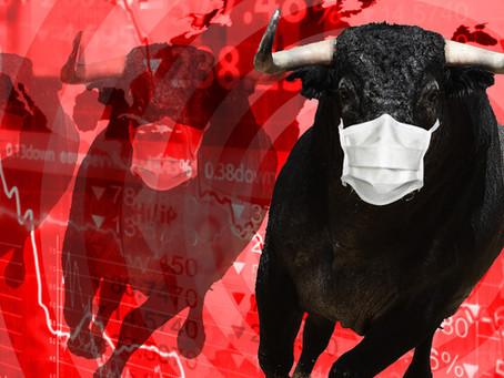 Bull Market in a Bear Economy