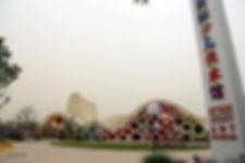 international art museum xian.jpg