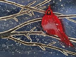 Cold Cardinal