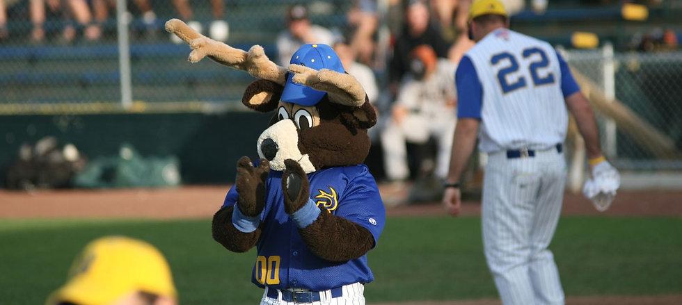 Waterloo-Bucks-Baseball.jpg