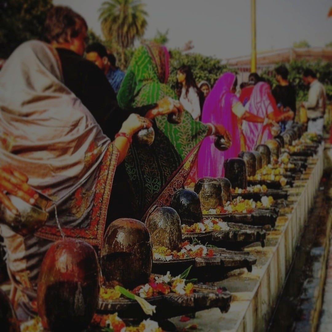 Submission #37 Pranjal Shukla, SRM