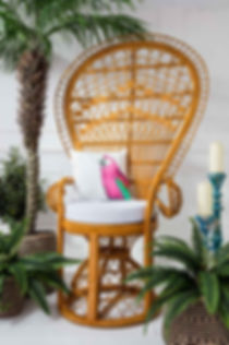 Lifestyle photography of a wicker chair and parrot cushion for Out There Interiors, by product photographer Simon Eldon