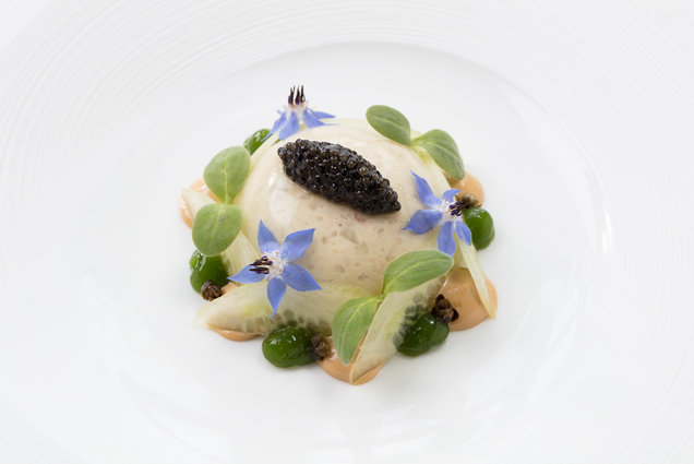 fine dining michelin star food photography