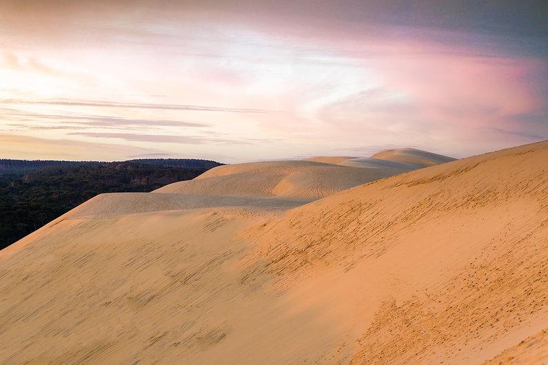 La Dune aux aurores.jpg