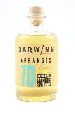 N°70. COULEURS BASSIN.  Mangue / Huître Végétale