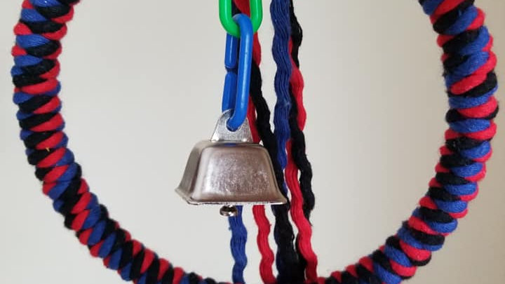Parrot Swing small with bell, 6""