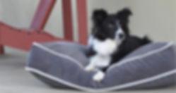 Shedrow K9 dog bed