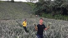 Cuc Phuong Adventure