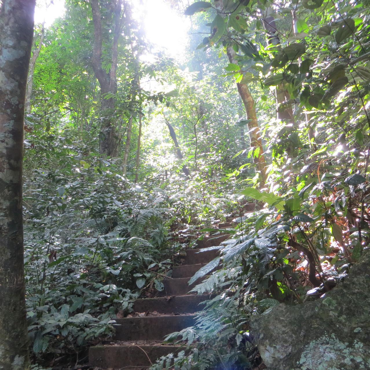 trekking trail cp