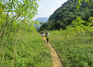 Forget Sapa!! Come with us to experience Pu Luong Nature Reserve
