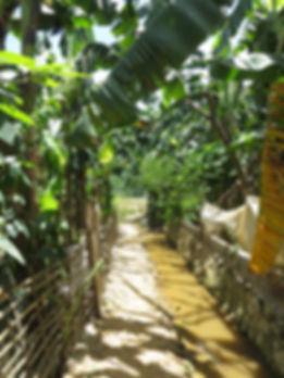 Pu Luong Trekking Tour