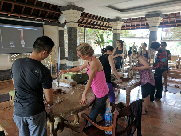 Annual Retreat: Pilates Anatomy and Innovations in Pilates. (Bali 2017)