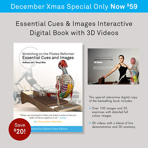 Reformer Cues & Images Interactive Digital PDF with Videos