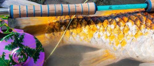 GoldenBones On The Fly Gouldfish Car'Poo