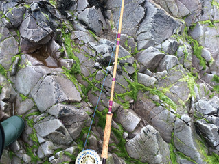 """Sea Trout Master"" - 10'6"" #8 weight Split Cane Sea Trout Rod"