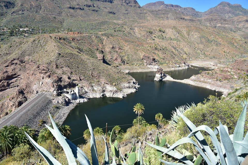 Fly Fishing for Carp in Gran Canaria