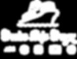 CSC 2017 White Logo.png