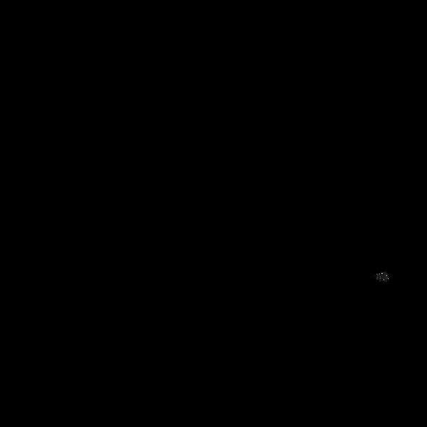 CSC Logo 2020 black, transparent (2).png