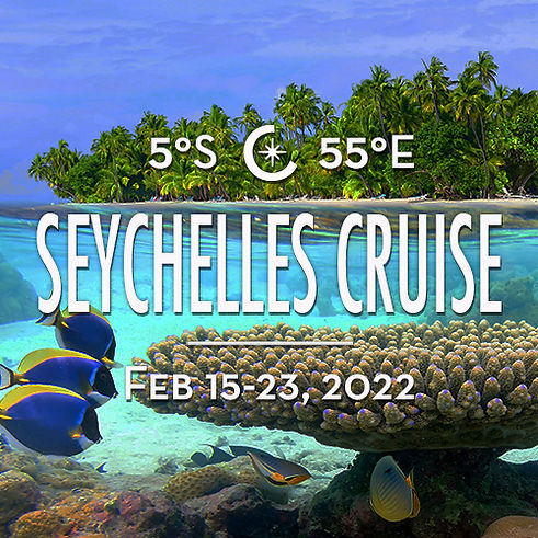 Trip-Tile-Seychelles-2021-500x500.jpg