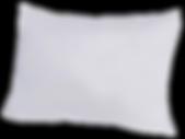 19535214_b5dcf4a5-ee0c-4900-85fe-35f5d0d