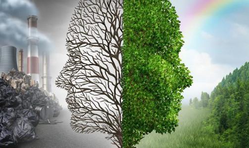 Sustentabilidade não é suficiente: precisamos pensar em regeneração